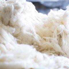 Cashmere wol